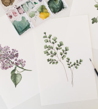 botanical watercolors workshop
