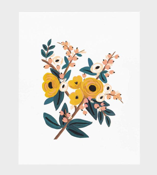 Rifle Paper co Marigold Botanical poster art print juliste