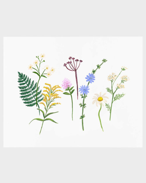 Rifle Paper co Wildflowers poster art print juliste