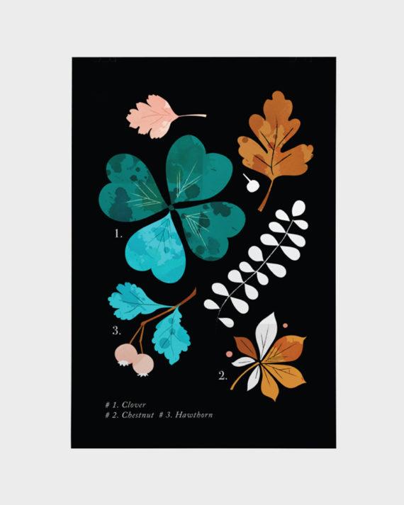 Papershop Helsinki Darling Clementine Botanika Clover Poster jul